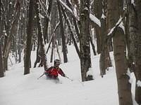 Powder-skiing-in-Bulgaria